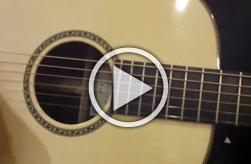 Thomas Rein Guitar R-00 12-fret 24.9